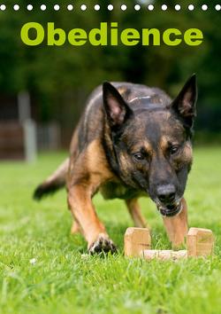 Obedience (Tischkalender 2021 DIN A5 hoch) von Spona / HSV Crazy-Dogs Niederrhein e.V.,  Helma