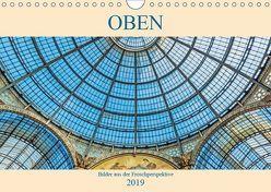 Oben – Bilder aus der Froschperspektive (Wandkalender 2019 DIN A4 quer) von Müller,  Christian
