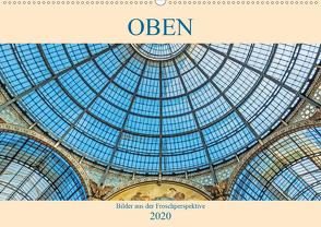 Oben – Bilder aus der Froschperspektive (Wandkalender 2020 DIN A2 quer) von Müller,  Christian