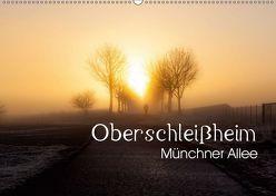 """Oberschleißheim – Münchner Allee (Wandkalender 2019 DIN A2 quer) von """"Elwood"""" Brauner,  Andreas"""