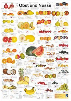 Obst und Nüsse von Welter-Schultes,  F W