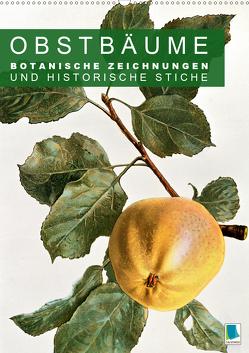 Obstbäume: Botanische Zeichnungen und historische Stiche (Premium, hochwertiger DIN A2 Wandkalender 2020, Kunstdruck in Hochglanz) von CALVENDO