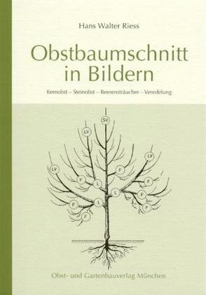 Obstbaumschnitt in Bildern von Riess,  Hans W
