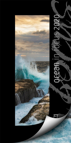 Ocean in Focus 2020