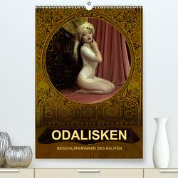 ODALISKEN – BEISCHLÄFERINNEN DES KALIFEN (Premium, hochwertiger DIN A2 Wandkalender 2021, Kunstdruck in Hochglanz) von Frutiger / fru.ch,  Beat