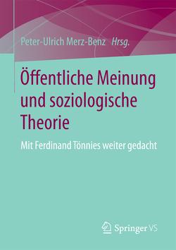 Öffentliche Meinung und soziologische Theorie von Merz-Benz,  Peter-Ulrich