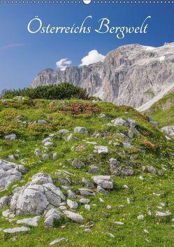 Österreichs Bergwelt (Wandkalender 2018 DIN A2 hoch) von Aigner,  Susanne, Brandstätter,  Hannes