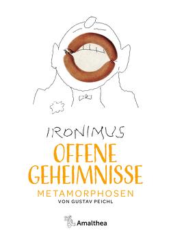 Offene Geheimnisse von Peichl,  Gustav, Peichl,  Markus