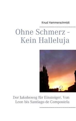 Ohne Schmerz – Kein Halleluja von Hammerschmidt,  Knud
