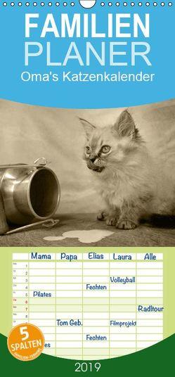 Oma's Katzenkalender 2019 – Familienplaner hoch (Wandkalender 2019 , 21 cm x 45 cm, hoch) von Säume,  Sylvia