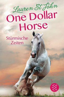One Dollar Horse – Stürmische Zeiten von Renfer,  Christoph, St John,  Lauren