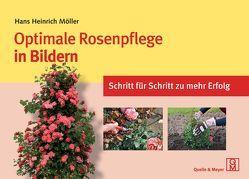 Optimale Rosenpflege in Bildern von Möller,  Hans Heinrich