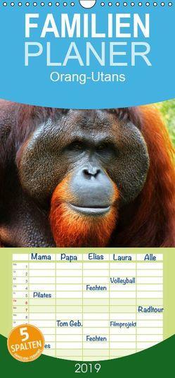 Orang-Utans – Familienplaner hoch (Wandkalender 2019 , 21 cm x 45 cm, hoch) von Stanzer,  Elisabeth