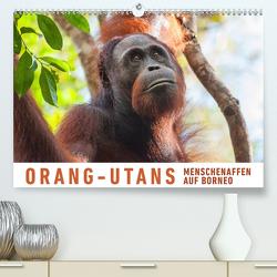 Orang-Utans Menschenaffen auf Borneo (Premium, hochwertiger DIN A2 Wandkalender 2021, Kunstdruck in Hochglanz) von Ristl,  Martin