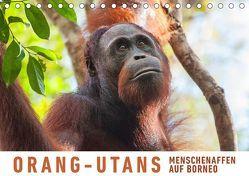 Orang-Utans Menschenaffen auf Borneo (Tischkalender 2019 DIN A5 quer) von Ristl,  Martin