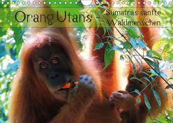 Orang Utans – Sumatras sanfte Waldmenschen (Wandkalender 2019 DIN A4 quer) von Otero,  S.B.