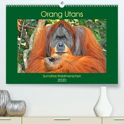 Orang Utans Sumatras Waldmenschen (Premium, hochwertiger DIN A2 Wandkalender 2020, Kunstdruck in Hochglanz) von Edel,  Anja