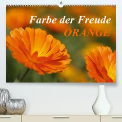 ORANGE – Farbe der Freude (Premium, hochwertiger DIN A2 Wandkalender 2021, Kunstdruck in Hochglanz) von Lindert-Rottke,  Antje