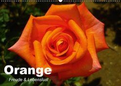 Orange. Freude und Lebenslust (Wandkalender 2018 DIN A2 quer) von Stanzer,  Elisabeth