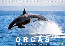 Orcas: Schwarz-weiße Giganten (Tischkalender 2020 DIN A5 quer) von CALVENDO