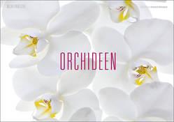 Orchideen von Pawlitzki,  Micha