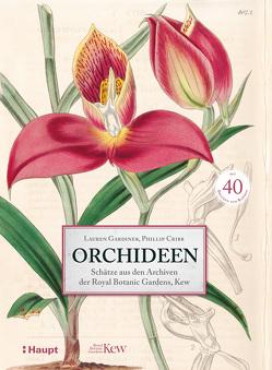 Orchideen von Bahle,  Frauke, Cribb,  Phillip, Gardiner,  Lauren