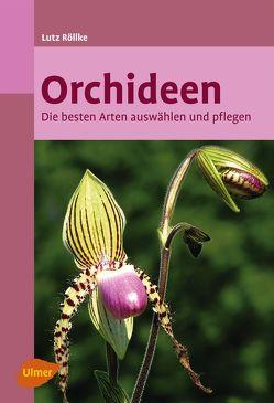 Orchideen von Röllke,  Lutz