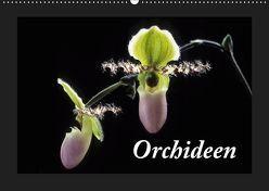 Orchideen 2019 (Wandkalender 2019 DIN A2 quer) von kleber©gagelart