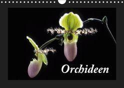 Orchideen 2019 (Wandkalender 2019 DIN A4 quer) von kleber©gagelart