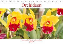 Orchideen Feuerwerk der Farben (Tischkalender 2019 DIN A5 quer) von Kruse,  Gisela