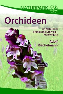 Orchideen im Naturpark Fränkische Schweiz – Frankenjura von Riechelmann,  Adolf