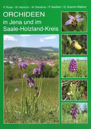 Orchideen in Jena und im Saale-Holzland-Kreis von Gramm-Wallner,  Gerhard, Heinrich,  Wolfgang, Rode,  Peter, Weißert,  Peter, Westhus,  Werner