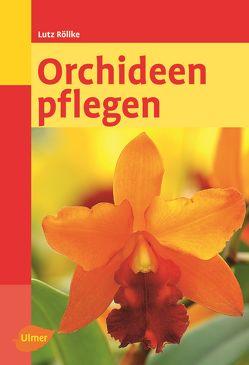 Orchideen pflegen von Röllke,  Lutz