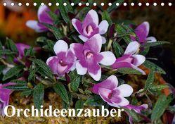 Orchideenzauber (Tischkalender 2019 DIN A5 quer)
