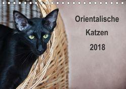 Orientalische Katzen (Tischkalender 2018 DIN A5 quer) von Bollich,  Heidi