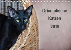 Orientalische Katzen (Tischkalender 2019 DIN A5 quer) von Bollich,  Heidi