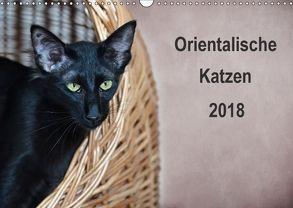 Orientalische Katzen (Wandkalender 2018 DIN A3 quer) von Bollich,  Heidi