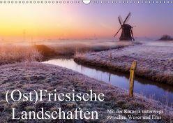 (Ost)Friesische Landschaften (Wandkalender 2019 DIN A3 quer)