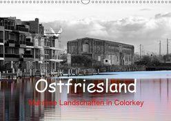 Ostfriesland Maritime Landschaften in Colorkey (Wandkalender 2019 DIN A3 quer)