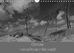 Ostsee – von schwarz bis weiß (Wandkalender 2019 DIN A4 quer) von Becker,  Uwe
