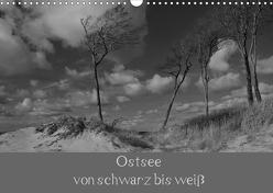 Ostsee – von schwarz bis weiß (Wandkalender 2020 DIN A3 quer) von Becker,  Uwe