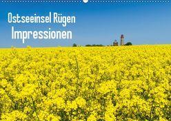 Ostseeinsel Rügen Impressionen (Wandkalender 2019 DIN A2 quer) von Pohl,  Roman