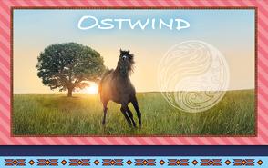 Ostwind – Frühjahr 2019: Briefpapier-Set