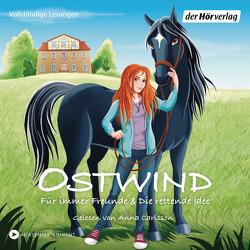 Ostwind – Für immer Freunde & Die rettende Idee von Carlsson,  Anna, THiLO