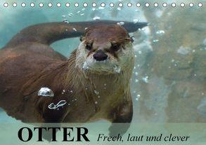 Otter. Frech, laut und clever (Tischkalender 2018 DIN A5 quer) von Stanzer,  Elisabeth