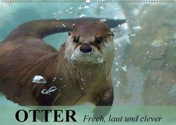Otter. Frech, laut und clever (Wandkalender 2019 DIN A2 quer) von Stanzer,  Elisabeth