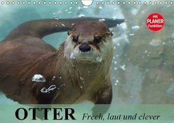 Otter. Frech, laut und clever (Wandkalender 2019 DIN A4 quer) von Stanzer,  Elisabeth