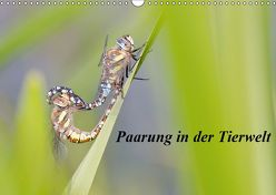 Paarung in der Tierwelt (Wandkalender 2019 DIN A3 quer) von Martin,  Wilfried