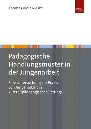 Pädagogische Handlungsmuster in der Jungenarbeit von Rieske,  Thomas Viola