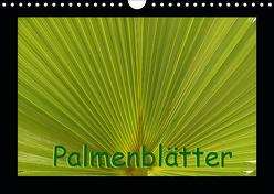 Palmenblätter (Wandkalender 2019 DIN A4 quer) von Burlager,  Claudia